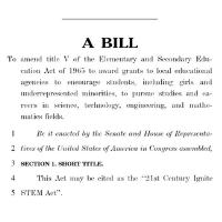 Bill Graphic